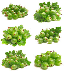 Gooseberry fruits