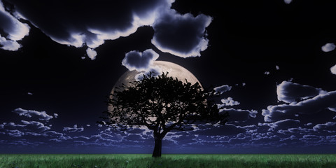 tree night full moon
