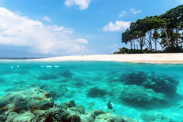 Andaman and Nicobar Islands. The concept of snorkeling and diving