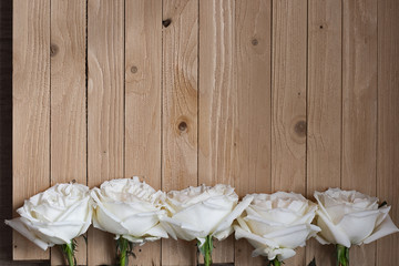Elegant White fresh roses lined up a row on natural weathered wood. Art Board, gift card, simple frame. Line of Gorgeous flowers on wooden background. Flat lay. Top view. Close up.