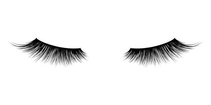 Eyelash or lash mascara vector icons