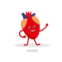 Strong healthy heart cartoon character isolated on white background. Happy heart icon vector flat design. Healthy organ concept medical illustration.