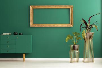 Green anteroom interior with plants