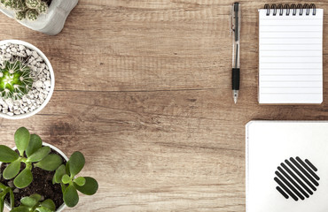 Top view on wooden desk with a notebook and plants arranged in a row