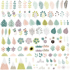 Cute flowers and plants big collection. Vector illustration