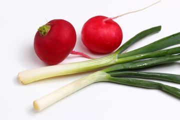 Green onion and radish