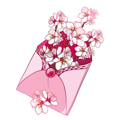 Vector bouquet with outline blooming Apricot flower bunch in pastel pink in open craft envelope isolated on white background. Ornate branch of Apricot in contour style for romantic spring design.