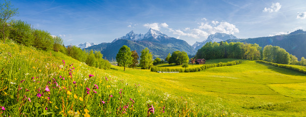 Poster Pistache Beautiful summer landscape in the Alps with blooming meadows in spring