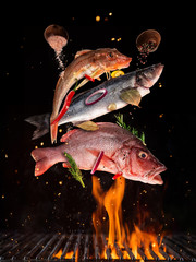 Photo sur Plexiglas Poisson Flying raw whole fish from grill grid, isolated on black background