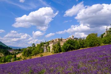 Garden Poster Lavender Vue sur lr village d'Aurel en été, Provence, France. Champ de lavande au premier plan.