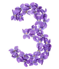 Arabic numeral 3, three, from flowers of viola, isolated on white background