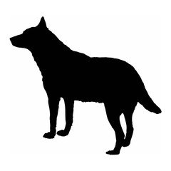 dog wolf black silhouette isolate on white background vector illustration