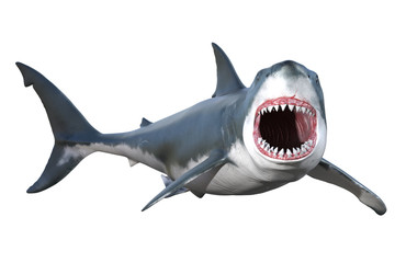 Great White shark isolated on white, 3d render