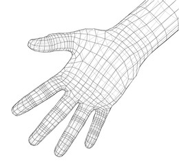 Human hand wire-frame. Vector