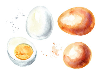 Boiled eggs set. Watercolor hand drawn illustration, isolated on white background