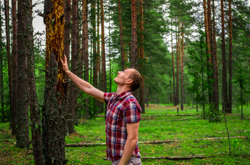 A man touches a drying tree in a park