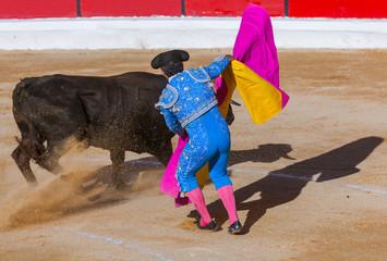MOITA LISBON, PORTUGAL - SEPTEMBER 14: Matador and bull in tourada bullfight on September 14, 2016 in Moita Lisbon, Portugal