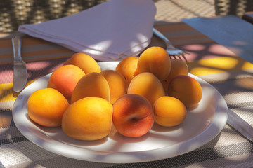 Ripe apricots on a plate