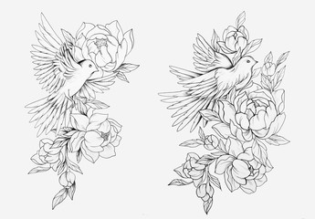 Sketch of a bird in flowers on a white background. Pigeon in peonies.