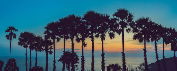 Silhouette coconut palm trees on beach at sunset. Vintage tone
