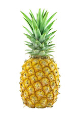 Pineapple isolated on white, Clipping path