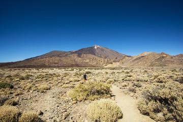 View of volcano Mount Teide