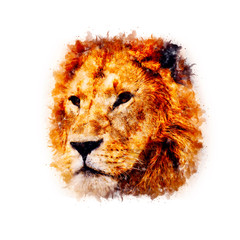 Lion Watercolor painting Art 2