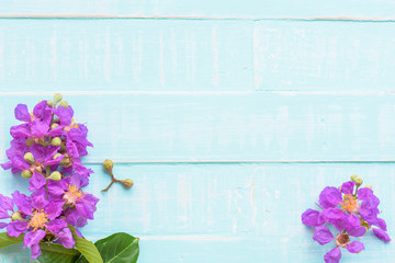 Purple Flowers on a pastel bright blue wooden background. Spring and summer concept.