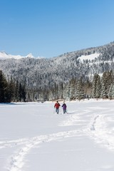 Couple walking together in snowy landscape