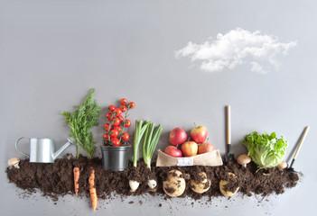 Foto op Plexiglas Groenten Organic fruit and vegtable garden background
