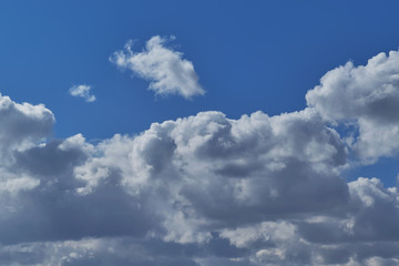 Cumulus clouds in the clear blue sky. Rainy dark clouds in the background. From above white clouds, illuminated by sunlight. Windy weather. Atmosphere and meteorology. Background or Wallpaper.