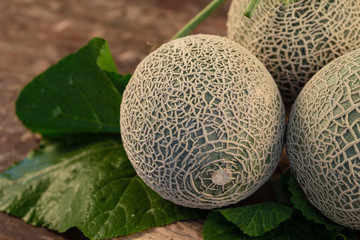 Close up cantaloupe melons on wooden table