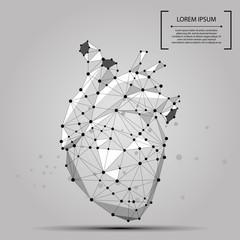 Abstract polygonal line and point human heart internal organ. Vector medicine concept mash illustration.
