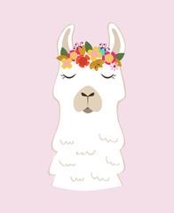 cute llama-alpaca illustration