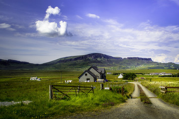 Rural house with beautiful green landscape