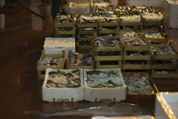 fish bazaar