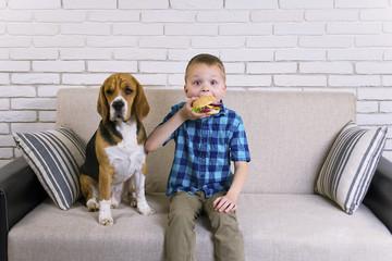 cute boy and funny beagle dog eating a hamburger