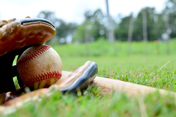 Baseball and leather glove laying in green grass field with wooden bat.  Shows game ball for the sport.