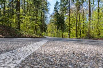 Fototapeta Hauptstrasse duch den Wald mit weisser linie obraz