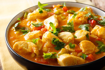 South American Food: Bobo chicken stew with vegetables in coconut milk close-up. horizontal