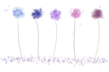 five pastel flower puffs  in a row; seeds floating away in the wind