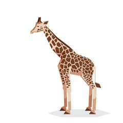 Flat geometric Giraffe