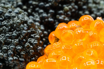 Kaviar fischeier rot schwarz
