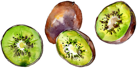 Exotic kiwi healthy food in a watercolor style isolated. Full name of the fruit: kiwi. Aquarelle wild fruit for background, texture, wrapper pattern or menu.