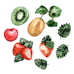 Set of isolated watercolor paintings of fruits, aquarelle raster vegetarian food, watercolour kiwi and apple, strawberry with leaves and summer juicy fruits. Vitamin and nutrition, citrus and harvest