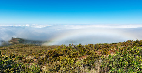 View over the clouds from the road to Haleakala Crater Maui Hawaii