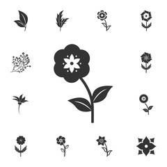 Flower icon. Detailed set of Flower illustrations. Premium quality graphic design icon. One of the collection icons for websites, web design, mobile app