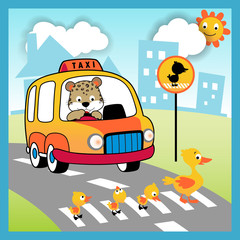 Driving in the road city with cute animals, vector cartoon illustration