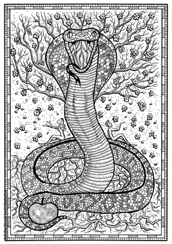 Snake Symbol With Eve Adam Tree Of Knowledge And Flowers In Frame