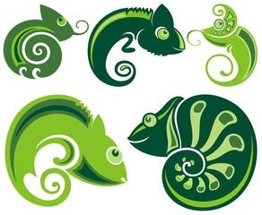 Chameleon icons. Cartoon illustration